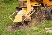 Stump Grinding Machine Removing Cut Tree