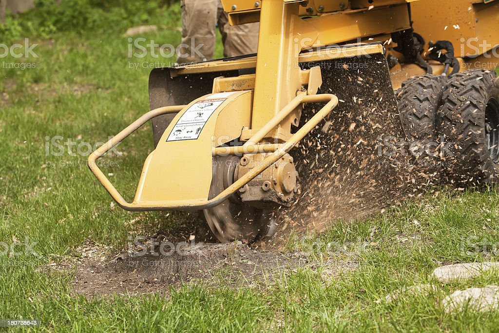 Stump Grinding Machine Removing Cut Tree stock photo