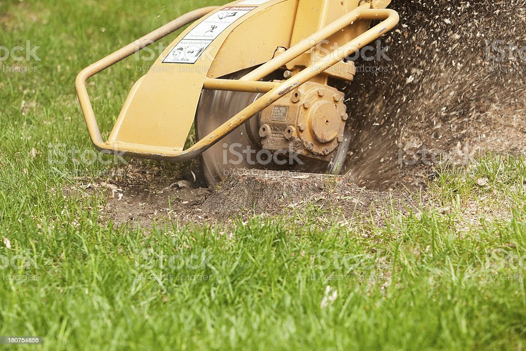 Stump Grinding Machine Removing Cut Tree royalty-free stock photo