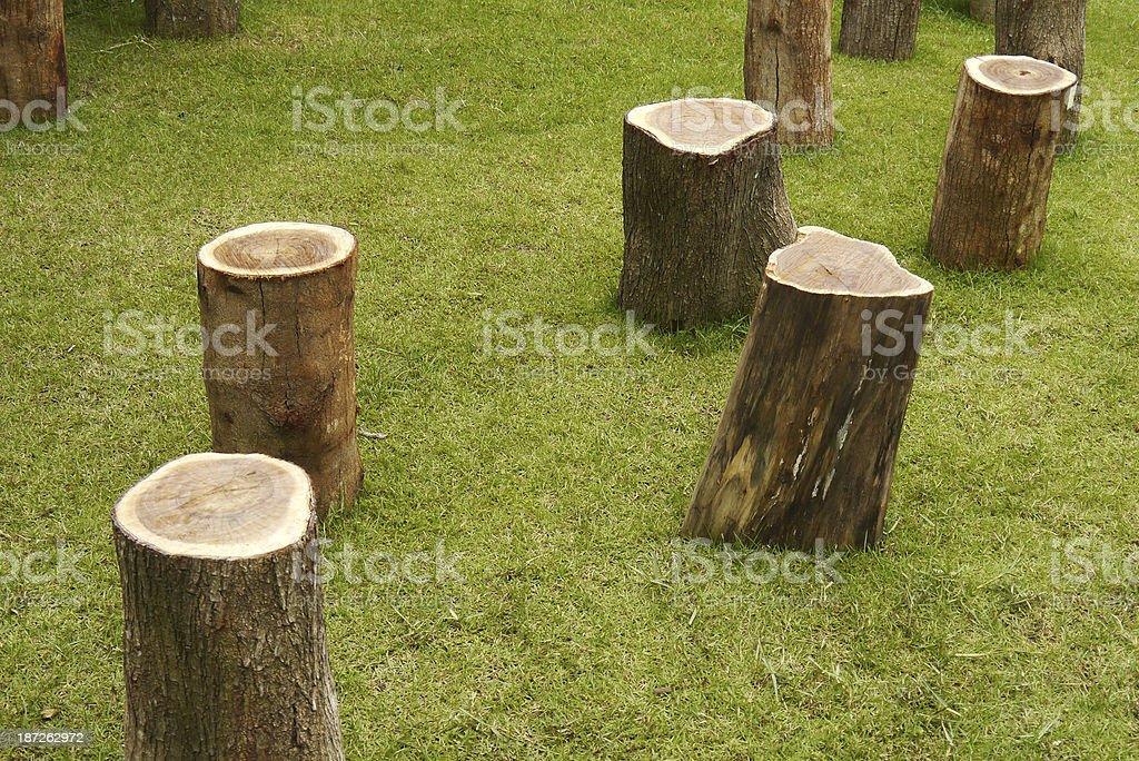 Stump on grass stock photo