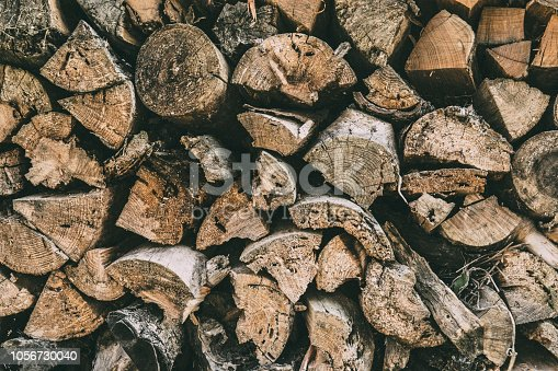 Texture of stumps of wood