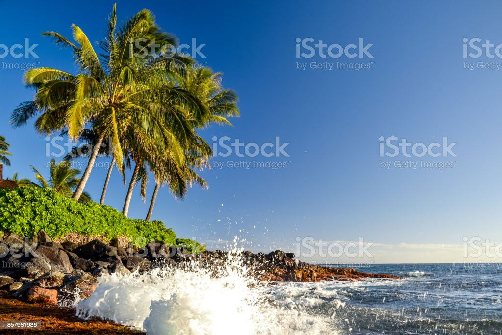 Stunning evening shot of a beach section of Lawai Beach near Poipu on the island of Kauai, Hawaii with palm trees and a beach house at the oceanfront. Poipu is one of the touristic centers of Kauai. stock photo