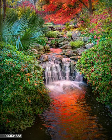 Vivid fall colors in the Fort Worth Botanic Garden featuring a cascading stream and colorful reflections on the water
