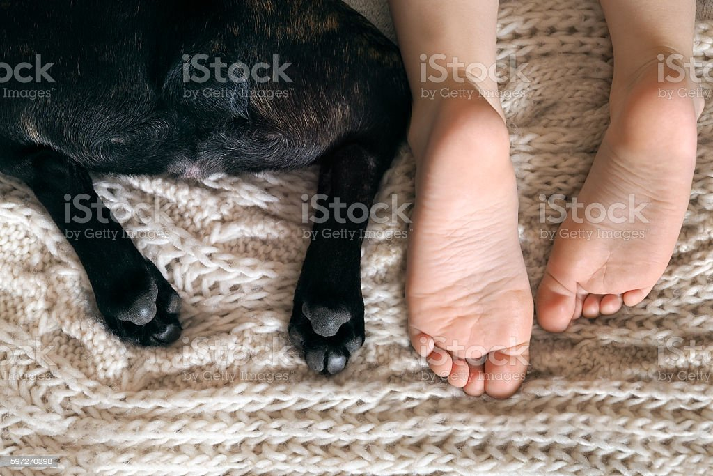 Stunning heels of the child and the dog Lizenzfreies stock-foto