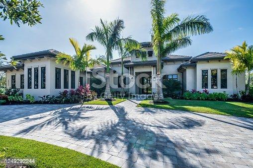 Palm trees and stone circle driveway
