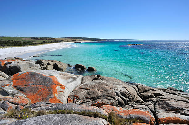 a stunning landscape of bay of fires - tasmania stock pictures, royalty-free photos & images