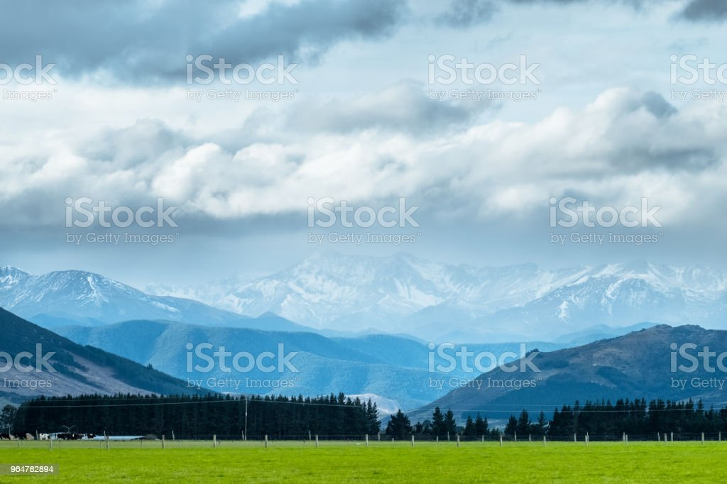 A stunning landscape scene of the agriculture in a rural area in New Zealand with a flock of sheep on a green grassland in the cloudy day. royalty-free stock photo