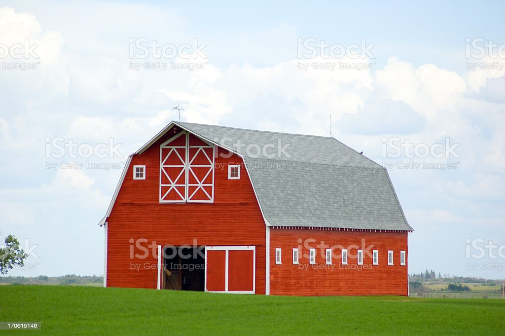 Stunning Red Barn in Green Field - Grain Crop stock photo