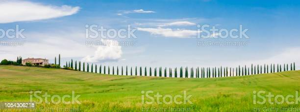 Stunning row of cypresses in the tuscan hills picture id1054306218?b=1&k=6&m=1054306218&s=612x612&h=ntc88gdds84cbouqyic7fdwfho7mq8qjz4bhdwt6v6c=