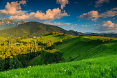 Summer alpine landscape with green fields and high mountains,Bran,Transylvania,Romania,Europe