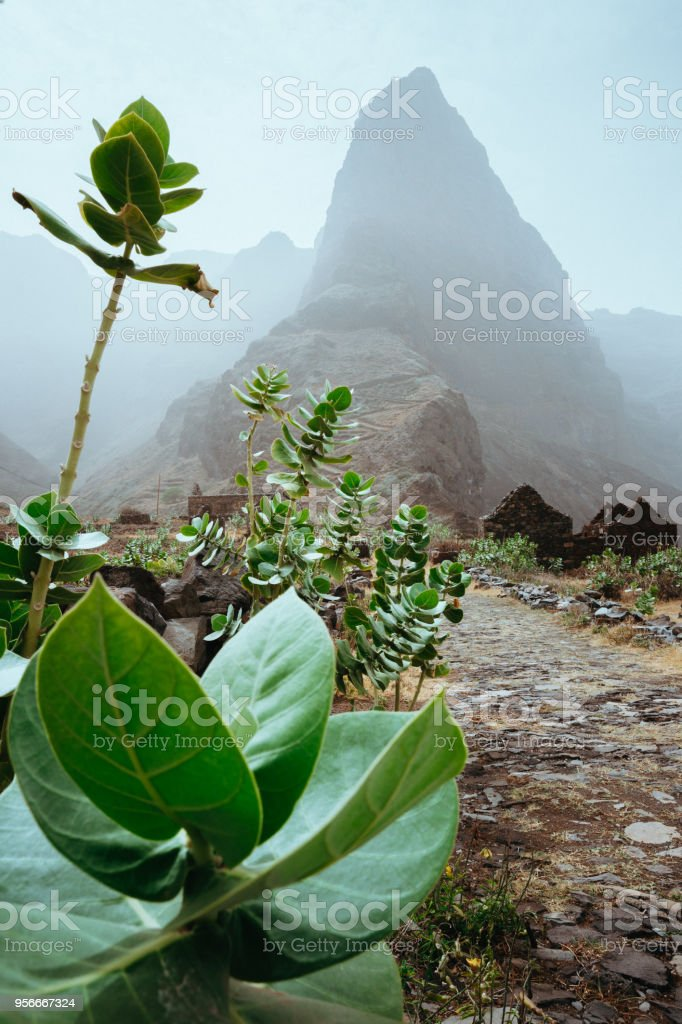 Stunning scenery of the coastal road. Steep black cliffs stretched out ahead. The road from Cruzinha to Ponta do Sol. Santo Antao. Cape Verde stock photo
