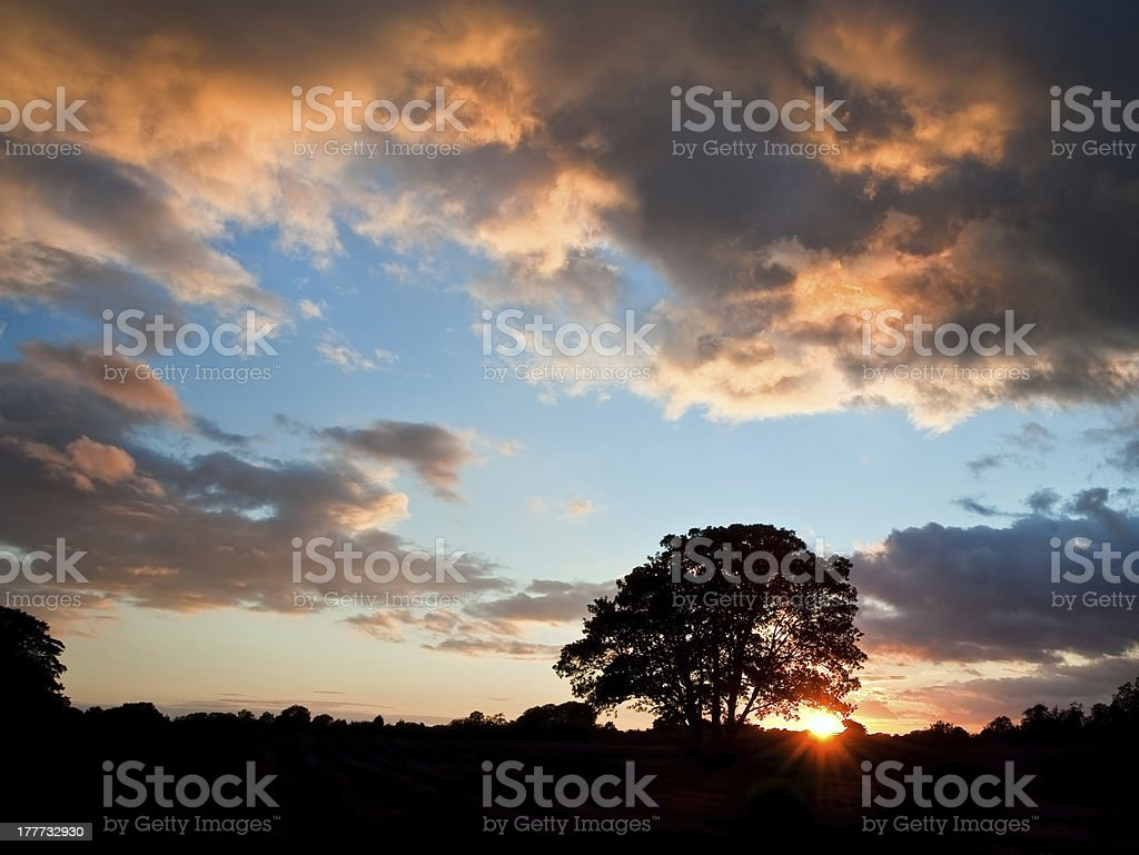 Stunning Summer sunset silhouette with sun royalty-free stock photo