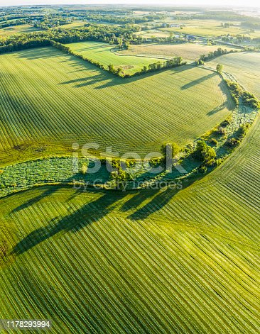 Stunning surface textures of velvet green farm field, aerial view.