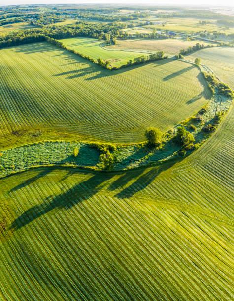 Stunning surface textures of velvet green farm field stock photo