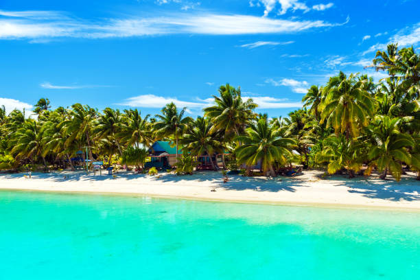 Stunning tropical Aitutaki island with palm trees, white sand, turquoise ocean water and blue sky at Cook Islands, South Pacific. Copy space for text Stunning tropical Aitutaki island with palm trees, white sand, turquoise ocean water and blue sky at Cook Islands, South Pacific. Copy space for text. south pacific ocean stock pictures, royalty-free photos & images