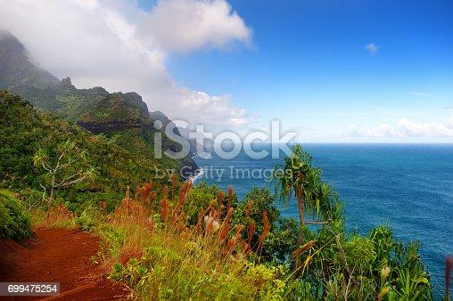 istock Stunning view from Kalalau trail in Kauai 699475254