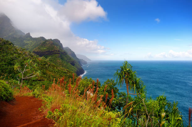 Stunning view from Kalalau trail in Kauai stock photo