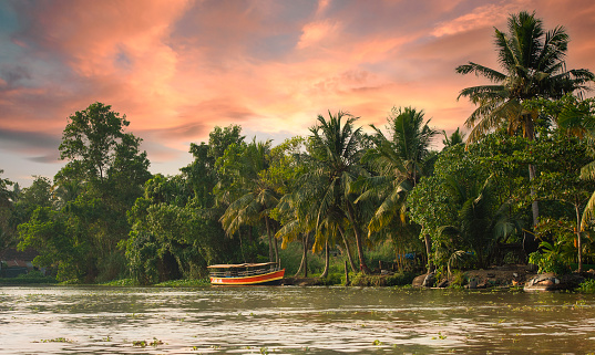 Stunning view of a boat sailing on the Alleppey's backwaters during a beautiful sunset. Kerala, India. The Kerala backwaters are a network of brackish lagoons and lakes of Kerala state in southern India.