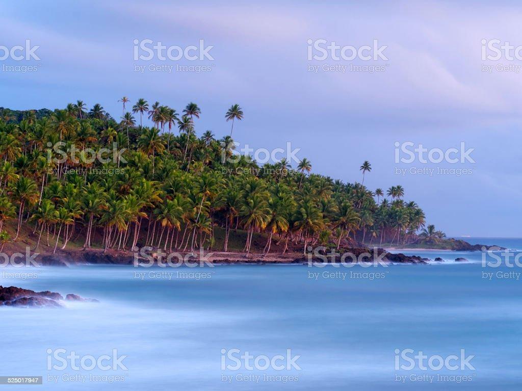 Stunning view of Jeribucaçu beach in Itacaré, Bahia. stock photo