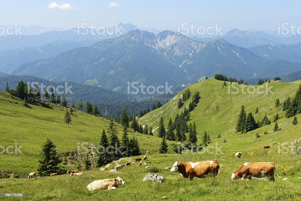 A stunning view of the Bavarian landscape stock photo