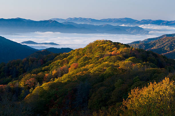 a stunning view of the smoky mountains national park - oost stockfoto's en -beelden