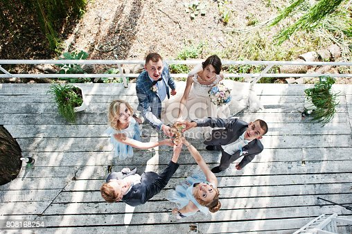 istock Stunning wedding couple with bridesmaids and groomsmen drinking champagne in the park on a perfect sunny day. 808168254