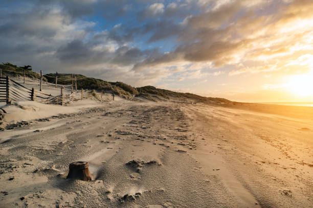 Stunning Winter sunrise over West Wittering beach in Sussex England with wind blowing sand across the beach stock photo