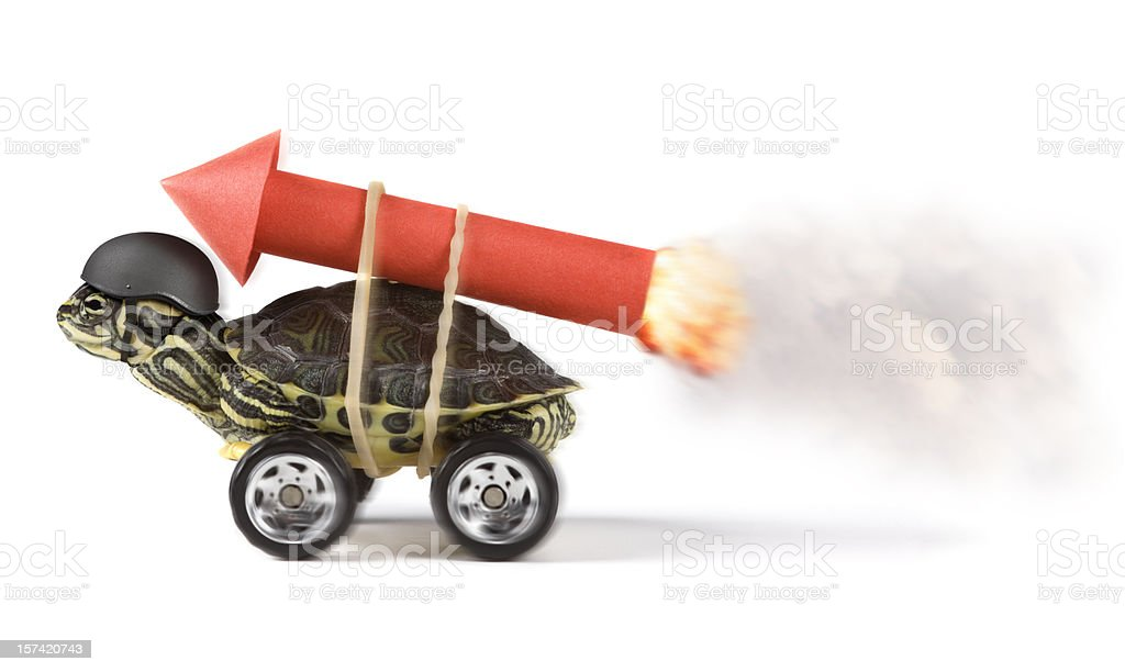 stunt stock photo