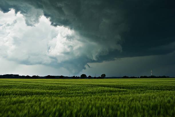 Sturmwolken über einem Feld – Foto