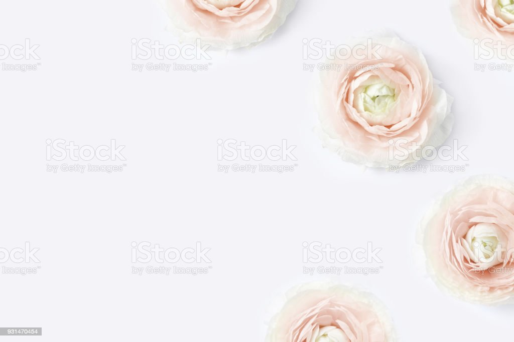 Styled stock photo. Feminine desktop mockup with blush pink buttercup flowers, Ranunculus, on white table background. Flat lay, top view. Floral pattern. Picture for blog, social media stock photo