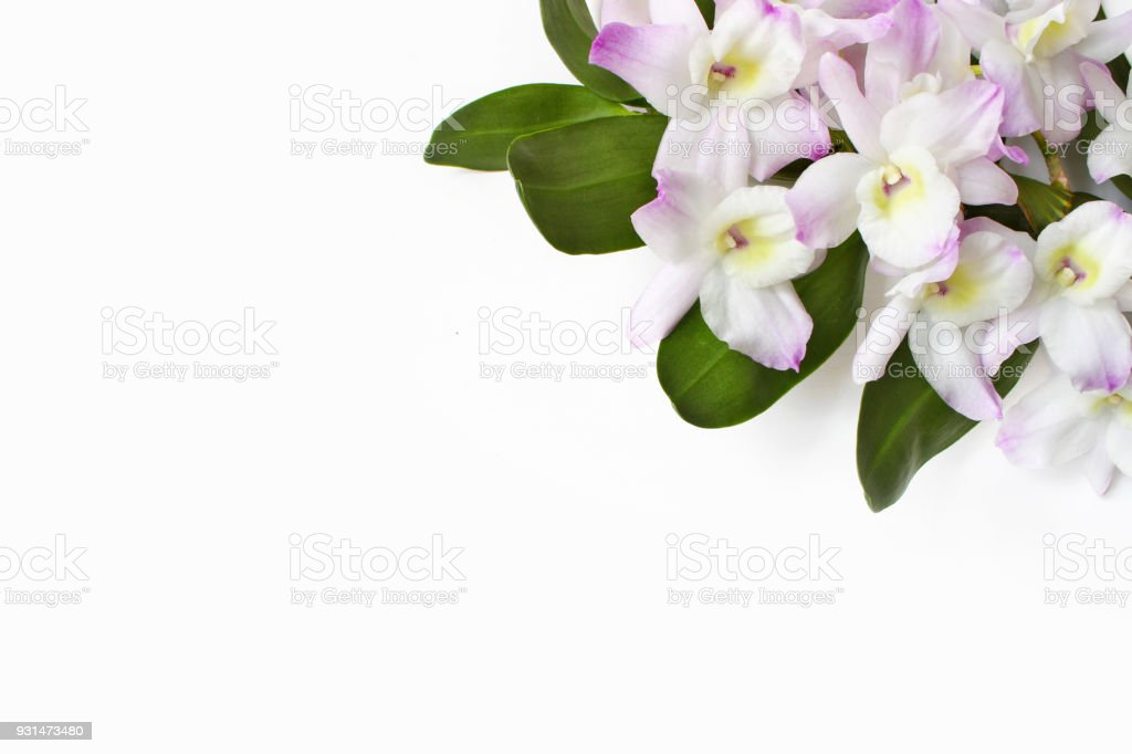 Styled stock photo feminine desktop scene dendrobium orchid flowers styled stock photo feminine desktop scene dendrobium orchid flowers on white table background mightylinksfo