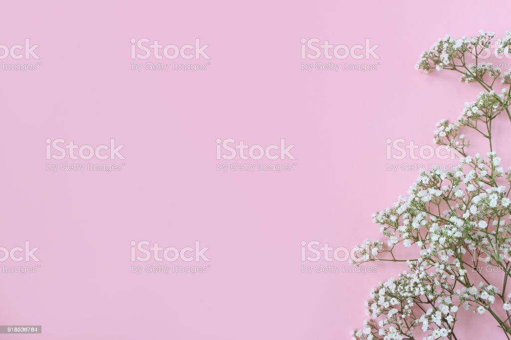 Fundo Rosa Bebe Com Flores