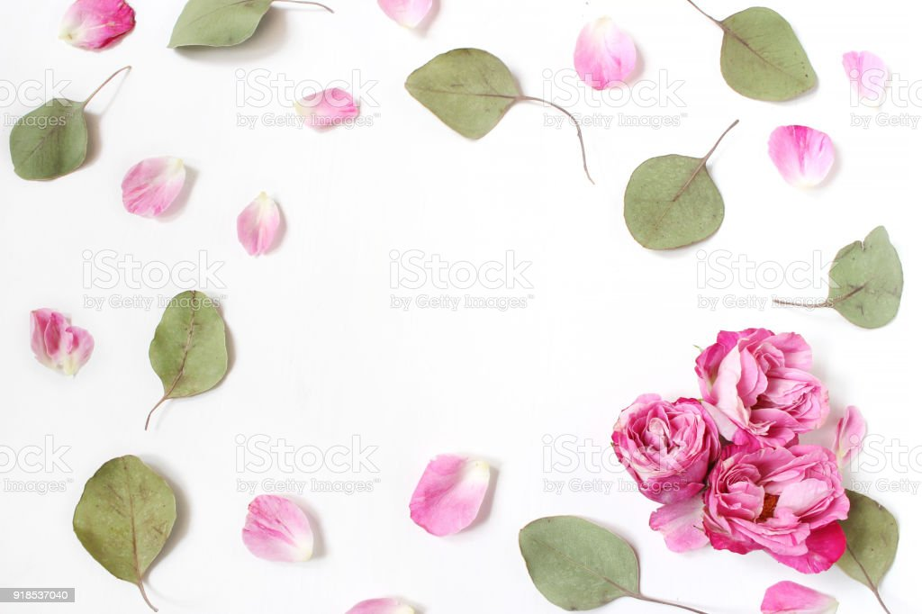 Styled stock photo. Feminine wedding desktop composition with pink roses petals and flowers, dry green eucalyptus leaves and white background. Floral pattern. Empty space. Top view. Picture for blog stock photo