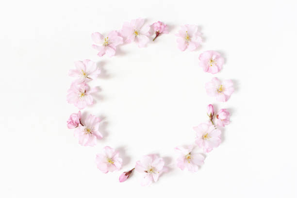 Styled stock photo spring easter feminine scene floral composition picture id947224030?b=1&k=6&m=947224030&s=612x612&w=0&h=6uds1d1wzam67berlott8my jt7dldi2c1fzi3phpgq=