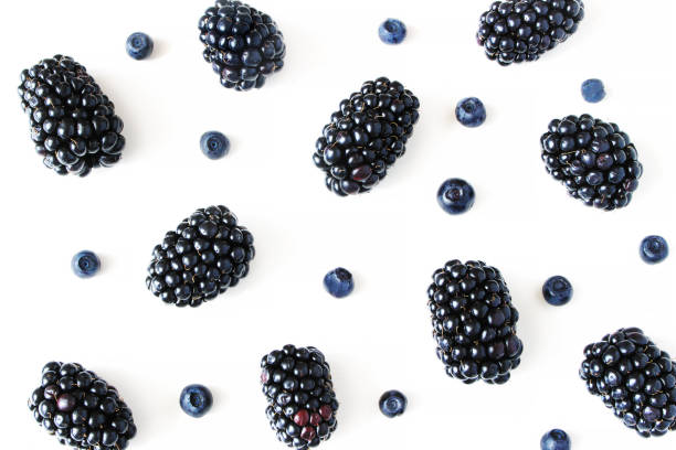 Styled stock photo. Summer healthy fruit composition with juicy blackberries and blueberries isolated on white table background. Food pattern. Empty space. Closeup Flat lay, top view. Styled stock photo. Summer healthy fruit composition with juicy blackberries and blueberries isolated on white table background. Food pattern. Empty space, closeup Flat lay, top view. blackberry fruit stock pictures, royalty-free photos & images