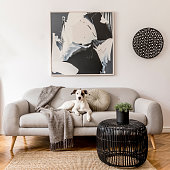 istock Stylish and scandinavian living room interior of modern apartment with gray sofa, pillows, plaid, plants, design commode, abstrac paintings on the wall. Modern home decor. Dog is lying on the sofa. 1194464365