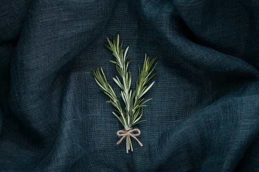 Stylish food. The rosemary composition.