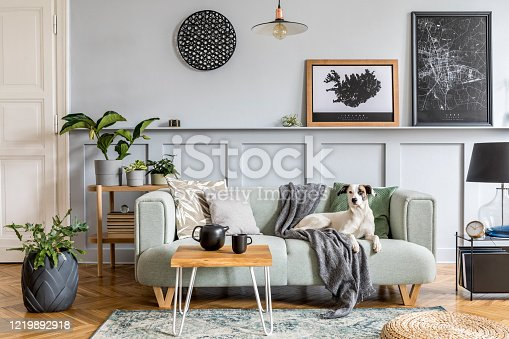istock Stylish interior design of living room with modern mint sofa, wooden console, furniture, plant, mock up poster frame, pdecoration , elegant accessories in home decor and dog lying on the couch. 1219892918