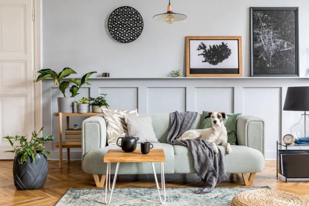 현대 민트 소파, 나무 콘솔, 가구, 식물, 모의 포스터 프레임, 장식, 가정 장식의 우아한 액세서리와 소파에 누워 있는 거실의 세련된 인테리어 디자인. - 모던 양식 뉴스 사진 이미지