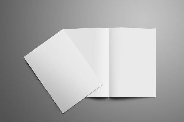 Stylish mockup with two blank   A4, (A5) bi-fold brochure with shadows isolated on gray background stock photo