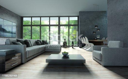 istock Stylish modern apartment living room 1193250163