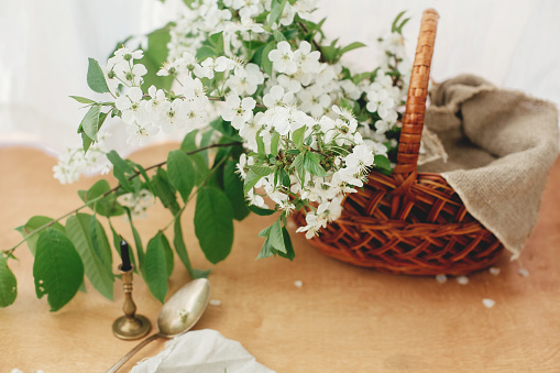 Stylish rustic basket with linen cloth and blooming cherry branches in soft light. Happy Easter concept. Eco friendly holiday. Rural still life'