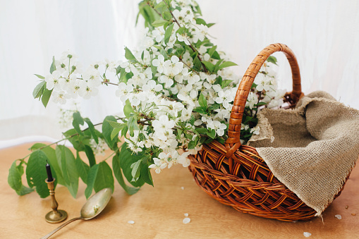 Stylish rustic basket with linen cloth and blooming cherry branches in soft light. Happy Easter concept. Eco friendly holiday. Rural still life