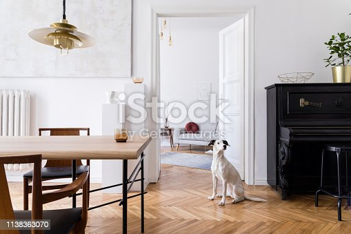 Modern scandi interior of living room.Elegant home decor with stylish accessories and furnitures.