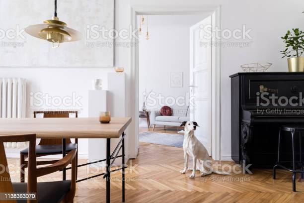 Stylish scandi interior of home space with design wooden table chairs picture id1138363070?b=1&k=6&m=1138363070&s=612x612&h=3ba65d6nchefairbrhcmxxcyt8lmgyz50dmishyx3ke=