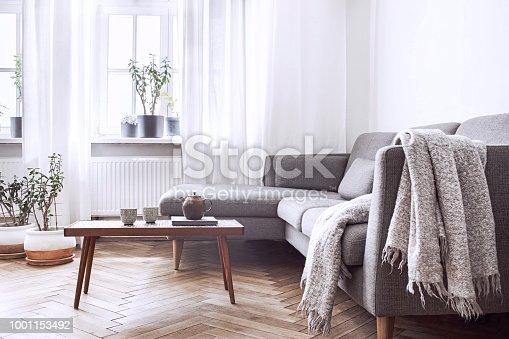 Stylish and modern scandinavian interior.
