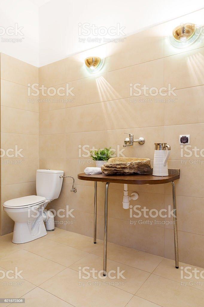 Stylish toilet interior photo libre de droits