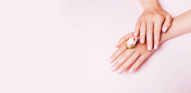 stilvolle trendige weibliche maniküre. frauenhände halten rose blume auf rosa hintergrund. ansicht von oben, flach liegend. - gelnägel stock-fotos und bilder