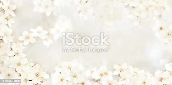istock Stylized delicate background with small flowers 1136461807
