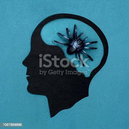 istock Stylized head silhouette. Arachnophobia 1067899996